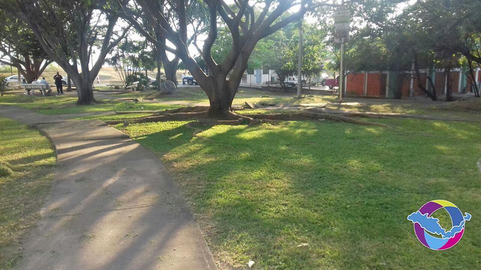 Realiza ayuntamiento labores de limpieza en jardines y for Jardin de villa de alvarez