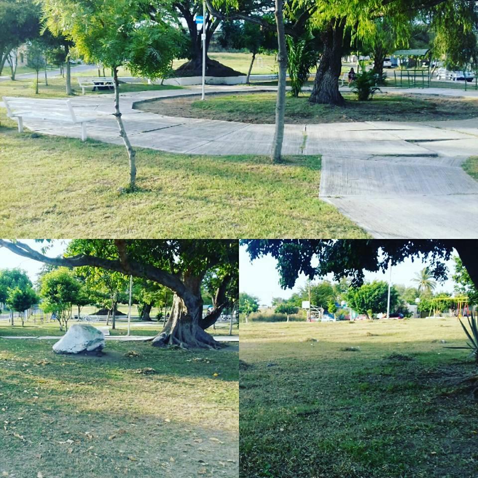 Realizan mantenimiento en reas verdes y jardines del for Jardin de villa de alvarez
