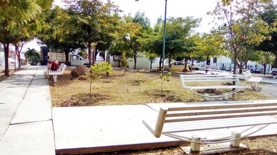 Limpian el jard n de la colonia arboledas del carmen for Jardin de villa de alvarez