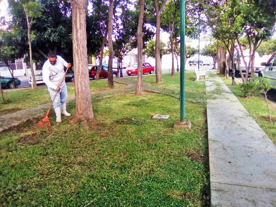 Realizan mantenimiento en jardines y reas verdes previo for Jardin de villa de alvarez