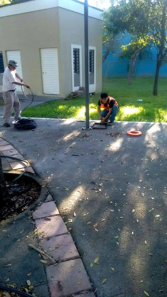 Instalan tecnolog a led en el jard n del arte en la villa for Jardin de villa de alvarez